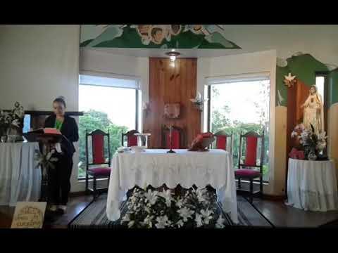 Santa Missa | 23.11.2020 | Segunda-feira | Padre José Sometti | ANSPAZ