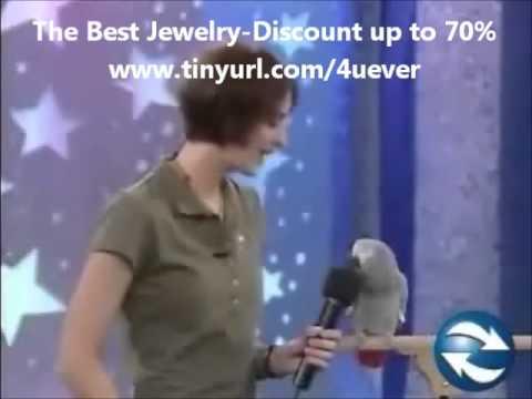 Con chim hài hước nhất trên thế giới, xem trăm lần, vẫn tức cười