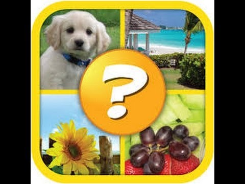 4 Pics 1 Word Puzzle Plus Level 1 Answers