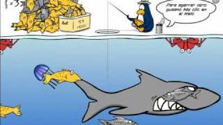 Pesca En El Hielo Como Ganar Todas La Estampillas (club