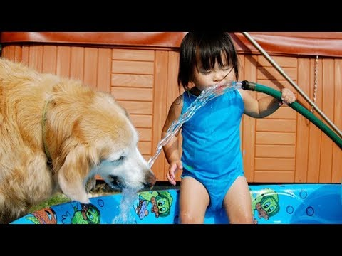 BEST FUNNY Laughing Babies Playing With Dog And Water | Funny Baby And Dog Compilations