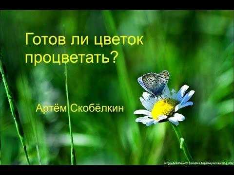 Готов ли цветок процветать. Артём Скобёлкин
