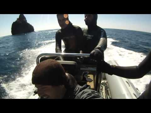 Pescasub - Joao Maximiano - PORTUGAL - Algarve Spearfishing Diaries VI