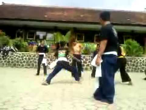 Video sambung sh winongo vs sh terate dlm rangka silahturohim..