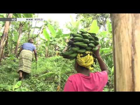 Cuộc sống của người Châu Phi trên miền núi