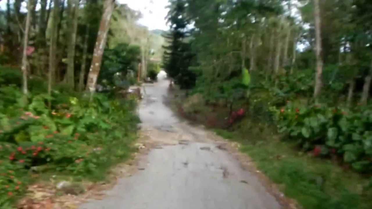 Dalaguete Philippines  City pictures : Mantalongon, Dalaguete, Cebu, Philippines YouTube