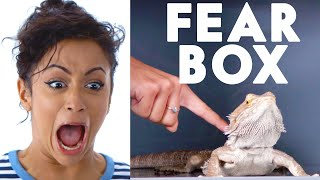 Liza Koshy Touches a Bearded Dragon, Chinchilla & Other Weird Stuff in the Fear Box | Vanity Fair