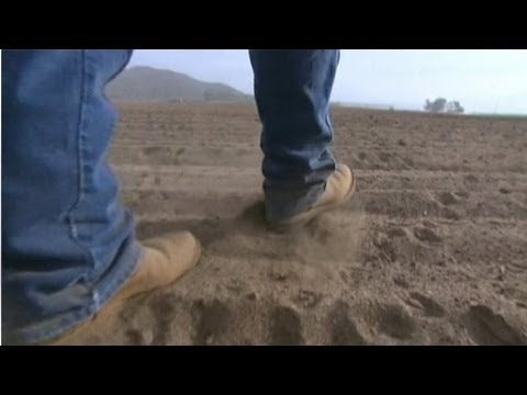 California farms turn to well-drilling to combat drought