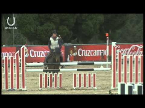 GdR Sporthorses - Dominka