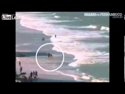 Brazil  Shark Attack Kills Teenage Tourist