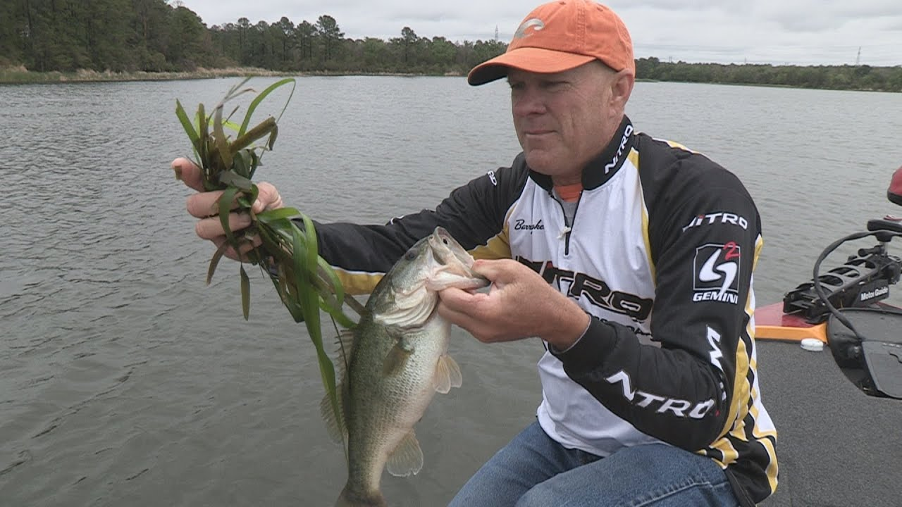 Southwest outdoors report 5 lake bastrop texas bass for Lake of the pines fishing report
