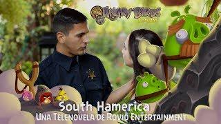 Angry Birds Seasons South HAMerica Telenovela