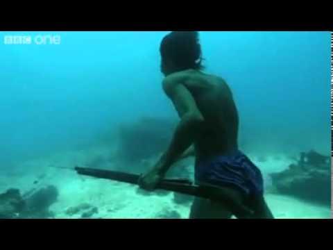 deniz 30 metre altında tüpsüz zıpkınla balık avı