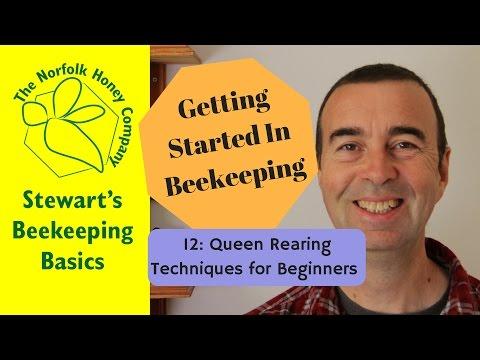 Getting Started in Beekeeping: 12: Queen Rearing for Beginners - The Norfolk Honey Co.  #Beekeeping