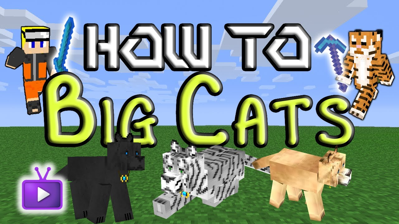 How To Tame Big Cats In Mo Creatures