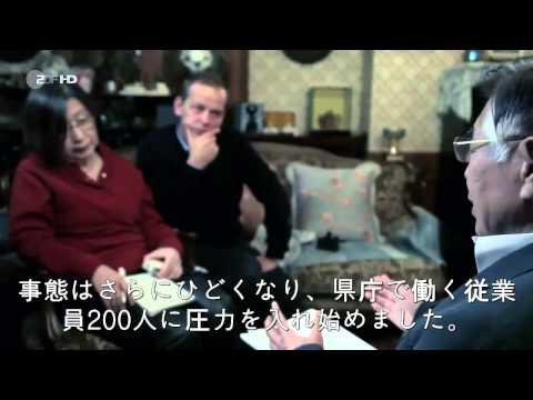 みんなが知らない、福島原発の真実(ドイツ番組で衝撃取材)