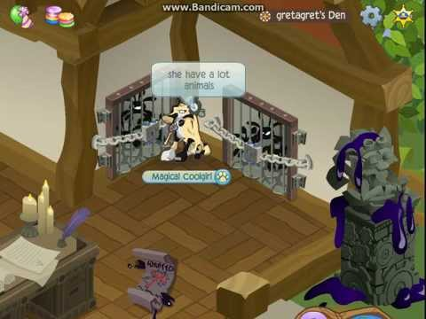 animal jam: 2 Member accounts