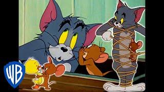 Tom a Jerry - Nepriatelia priateľmi