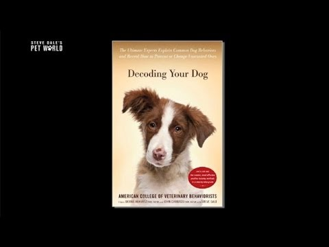 Thumbnail image for 'Decoding Your Dog: Ultimate Guide to Explain Common Dog Behaviors'
