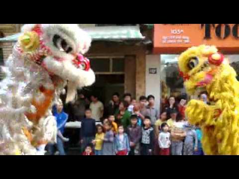 Lân Sư Rồng Hà Nội Tân Hưng Đường - Khai Trương Biển 24-2-2013 (Múa Lân)