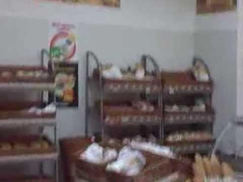 Nepozvani gosti: Vrapci u Tempu sleteli na hleb