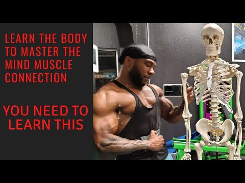 Train The Muscle Without Involving The Joints? | Strongest Part Of The Body? | Connect With The Body