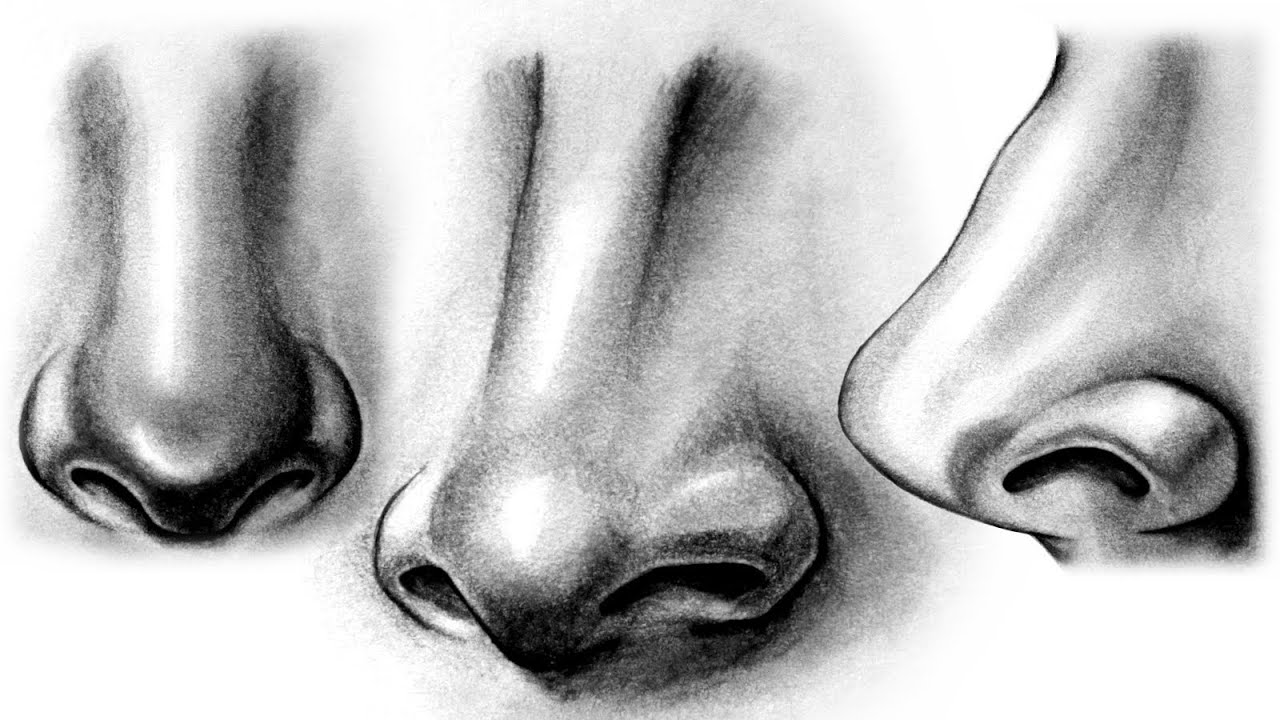 How to draw a realistic nose youtube