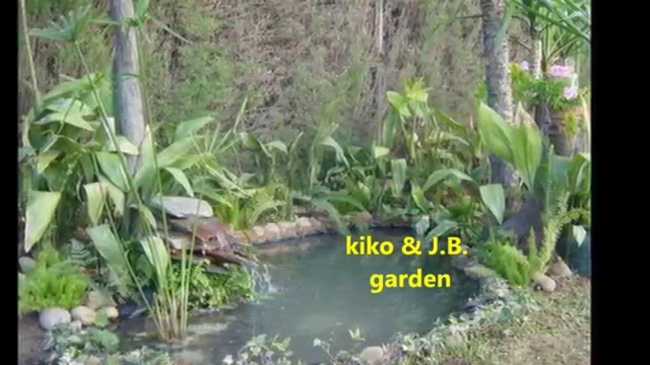 Estanques caseros de agua para peces en el jard for Filtros para estanques de peces caseros