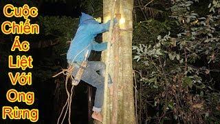 Mật ong rừng 2017: Trận chiến ác liệt trả thù ong rừng lúc nửa đêm