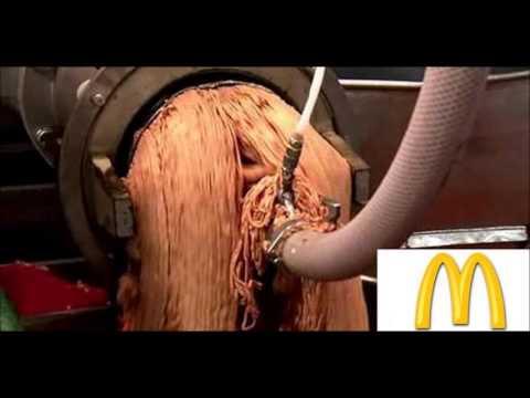 (Noticia) El origen de la carne de McDonald's ¡HORRIBLE!