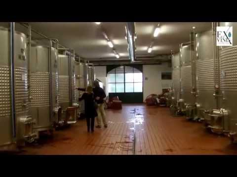 Exvinis passione per il vino delle piccole cantine di for Piccole planimetrie con cantine