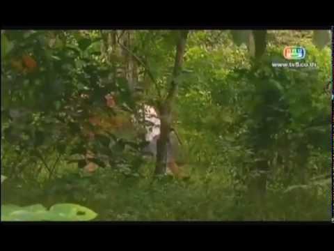 Xin Con Mai Yeu Em tap 1