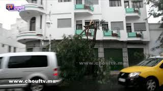 مخلفات الرياح و التساقطات المطرية..شوفو الشجر طـاح فتطوان   |   خارج البلاطو