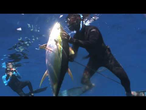 Spearfishing - Hawaii #10 by Rob White