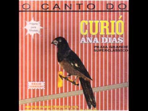 CD Curio Canto Super Classico Praia - ANA DIAS - Proprio Para Filhotes