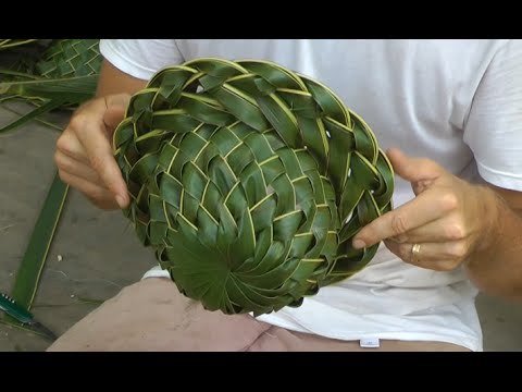 How to make a Coconut Palm Leaf Hat - Part 1 of 2!