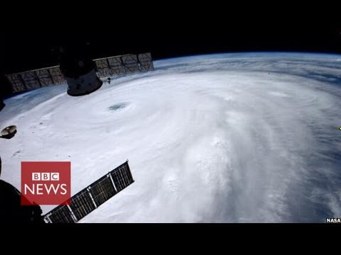 Japan typhoon Neoguri winds 'up to 175 kmph' - BBC News