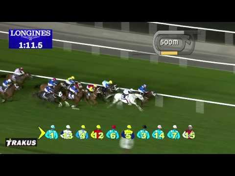 Vidéo de la course PMU LONGINES CONQUEST CLASSIC