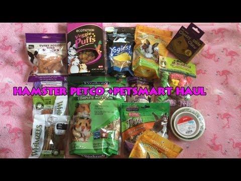 Hamster Treats Petsmart Hamster Petco Petsmart Haul