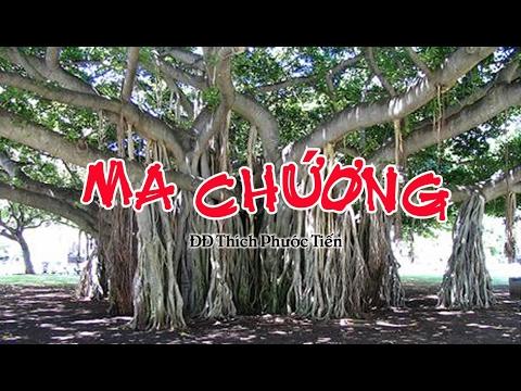 MA CHƯỚNG -Thích Phước Tiến (07 2013)