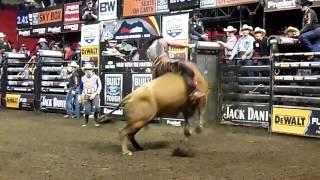 PBR Bull Riders 2016
