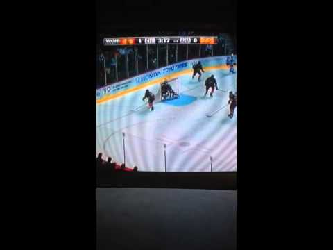 Chicago Blackhawks vs Anaheim Ducks 2/5/2014 part 8