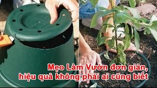 Mẹo Làm Vườn đơn giản, hiệu quả không phải ai cũng biết