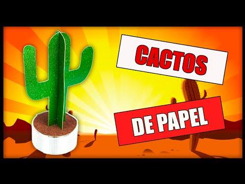 POLYFORT EXTRA - DIY: Cactos de papel
