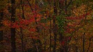 Color Everywhere (Deana Carter)