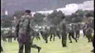 Military Martial Art 2