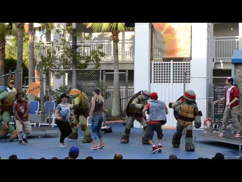 TMNT Turtle Power show