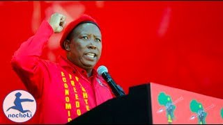 Julius Malema's We Need a United States of Africa Speech