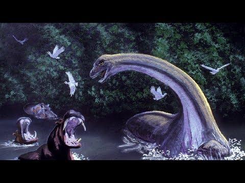 5 loài tưởng chừng tuyệt chủng có thể vẫn tồn tại