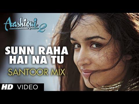 Sunn Raha Hai - Santoor Mix